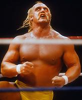 Hulk Hogan 1987<br /> Photo By John Barrett/PHOTOlink