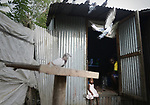 "Migrants comoriens avec qui Aicha partage son ""Banga""  dans un bidonville de Mayotte, novembre 2016."