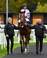 Winner of The Byerley Stud 'Season Finale' Handicap, Moabit ridden by Megan Nicholls and trained by Paul Nicholls is led into the winners enclose during Bathwick Tyres Reduced Admission Race Day at Salisbury Racecourse on 9th October 2017