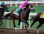 ARCADIA, CA MARCH 10: City of Light and Drayden Van Dyke charging to the lead in the Triple Bend Handicap (Grade I) on March 10, 2018 at Santa Anita Park in Arcadia, CA (Photo by Chris Crestik/ Eclipse Sportswire/ Getty Images)
