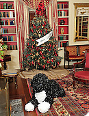 A Christmas Tree in the Library of the White House with a replica of Bo in front of the fireplace.  The White House Library contains over 2,700 books.  The theme for the White House Christmas 2011 is Shine, Give, Share - celebrating the countless ways we can lift up those around us, put our best self forward in the spirit of the season, spend time with friends and family, celebrate the joy of giving to others, and share our blessings with all.  The theme translates to the holiday décor on several levels. There is the literal translation through the use of shiny elements – star motifs, quartz and metallics like copper, aluminum and mirrored paper. There is also a conceptual connection – we're inviting visitors to give their thanks to members of our military, and have once again invited guest artists to share their talents working with the White House. This year's décor also includes handmade decorations crafted from simple materials – paper, felt, and even recycled cans. These are projects that anyone can do at home using readily available materials that are inexpensive or free..Credit: Ron Sachs / CNP