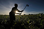 A woman farmer hoes her field near Chibamu, in northern Malawi.