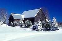 farm, winter, Calais, Vermont, VT, Snow-covered evergreens and barn on a farm on a sunny day in winter in Calais.