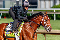 LOUISVILLE, KENTUCKY - MAY 01: Patch, owned by Calumet Farm and trained by Todd Pletcher, exercises in preparation for the Kentucky Derby at Churchill Downs on May 1, 2017 in Louisville, Kentucky. (Photo by Jesse Caris/Eclipse Sportswire/Getty Images)