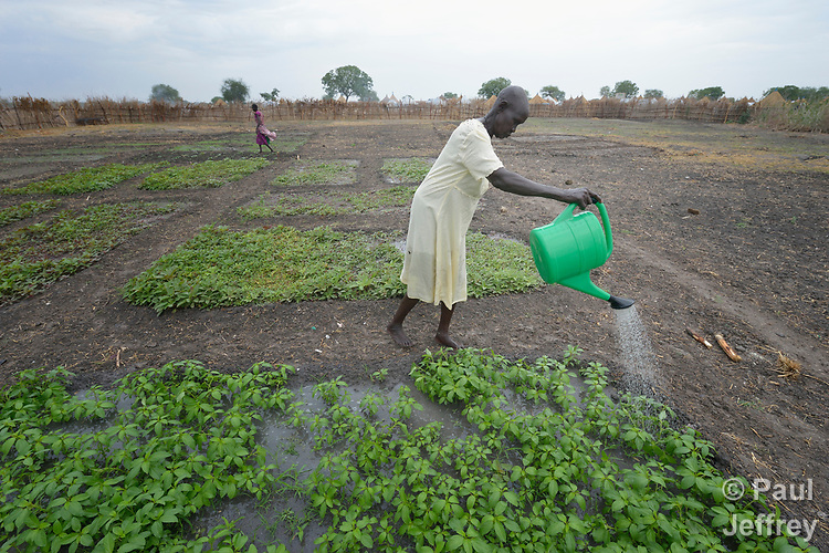Women water plants in a communal vegetable garden in Poktap, a town in South Sudan's Jonglei State where conflict, drought and inflation have caused severe food insecurity. Most families in the town have just returned from years of displacement. The Lutheran World Federation, a member of the ACT Alliance, is helping families tackle food problems, and provided seeds and tools to help the women start the garden.