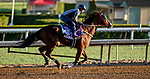 October 28, 2019 :Breeders' Cup Dirt Mile entrant Blue Chipper, trained by Kim Young Kwan, exercises in preparation for the Breeders' Cup World Championships at Santa Anita Park in Arcadia, California on October 28, 2019. Scott Serio/Eclipse Sportswire/Breeders' Cup/CSM