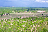 Overlooking Hwange national park as a big thunder storm begins to roll in at the beginning of the rainy season in mid November. Mopane trees dominate the trees in this part of the Park in North west Zimbabwe. It is the largest National park in Zimbabwe.