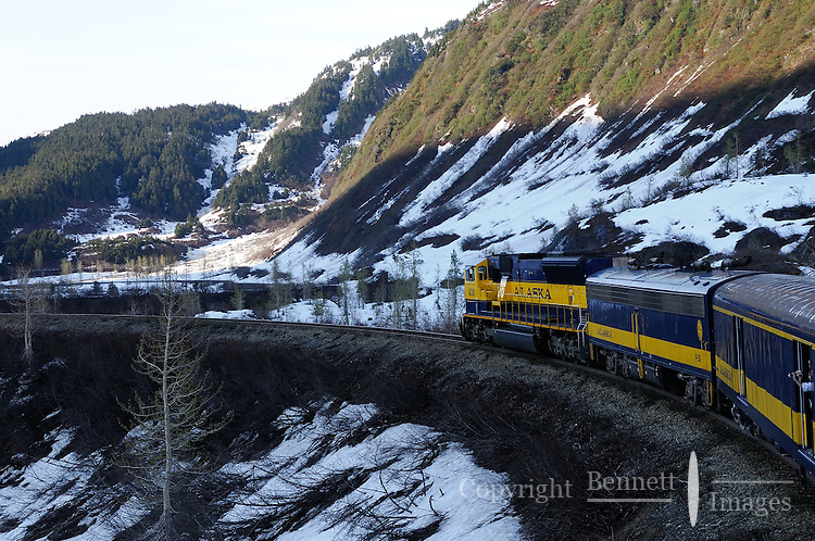 "The Alaska Railroad's Coastal Classic train navigates through the ""S Curves"" high in the Chugach Mountains."