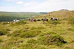 People riding horses by Sharp Tor,  Dartmoor national park, Devon, England, UK