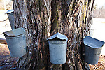 Making maple syrup from maple sap at Parker's Maple Barn in Mason, NH, USA