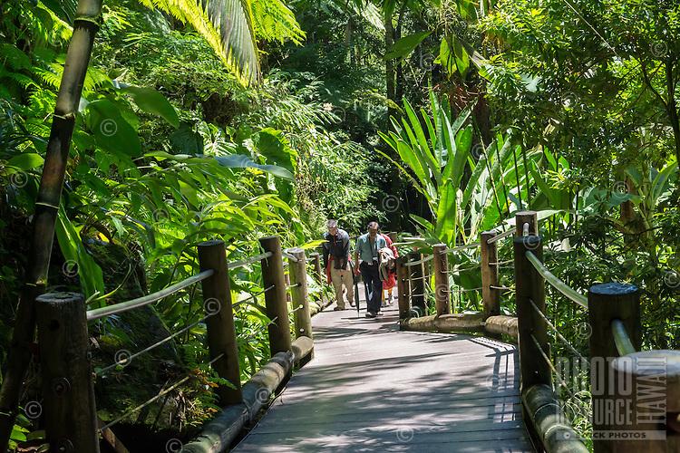 Visitors on the boardwalk at Hawaii Tropical Botanical Garden in Papa'ikou near Hilo, Big Island of Hawai'i.