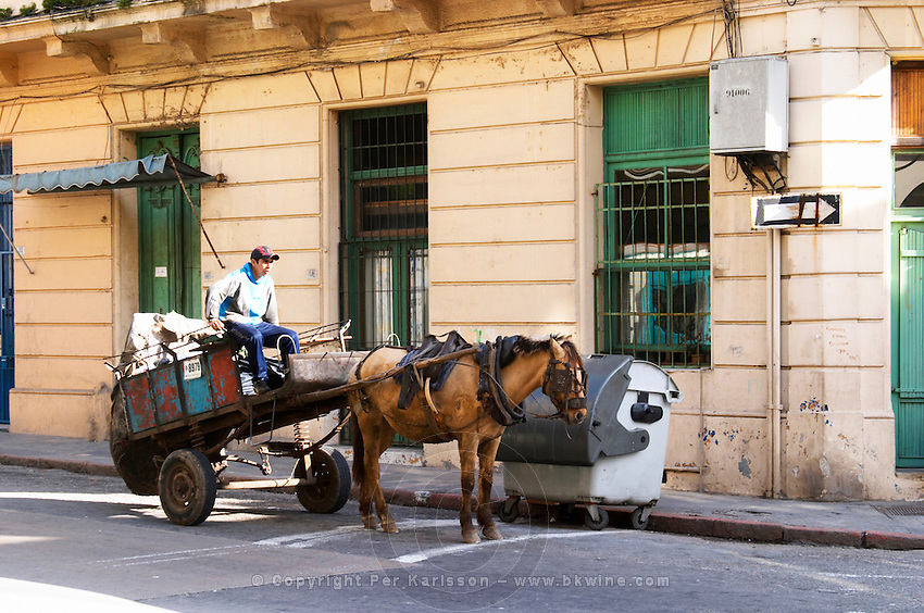 A horse drawn cart on a street in the city and a young boy searching for something useful on the street or in the rubbish dust bins Montevideo, Uruguay, South America