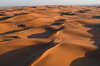 12th January 2020, Riyadh, Saudi Arabia;  07 Benavides Kevin (arg), Honda, Monster Energy Honda Team 2020, Moto, during Stage 7 of the Dakar 2020 between Riyadh and Wadi Al-Dawasir, 741 km - SS 546 km, in Saudi Arabia - Editorial Use
