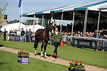 Stamford, Lincolnshire, United Kingdom, 8th September 2019, Ariel Grald (USA) & Leamore Master Plan during the 2nd Horse Inspection of the 2019 Land Rover Burghley Horse Trials, Credit: Jonathan Clarke/JPC Images