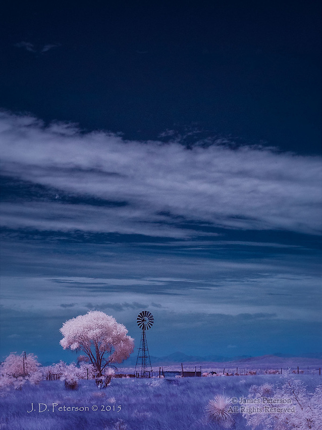 Windmill and Cottonwood, near Dos Cabezas, Arizona (Infrared)