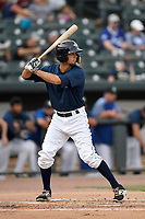 Center fielder Jacob Zanon (21) of the Columbia Fireflies bats in a game against the Charleston RiverDogs on Monday, August 7, 2017, at Spirit Communications Park in Columbia, South Carolina. Columbia won, 6-4. (Tom Priddy/Four Seam Images)