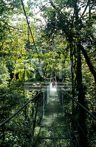 Monte Verde, Costa Rica. Tourist crossing a suspension bridge above the forest at the Cloud Forest Reserve.
