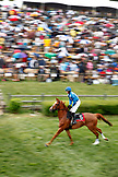 USA, Tennessee, Nashville, Iroquois Steeplechase, a horse and jockey warm up for the seventh and final race of the day