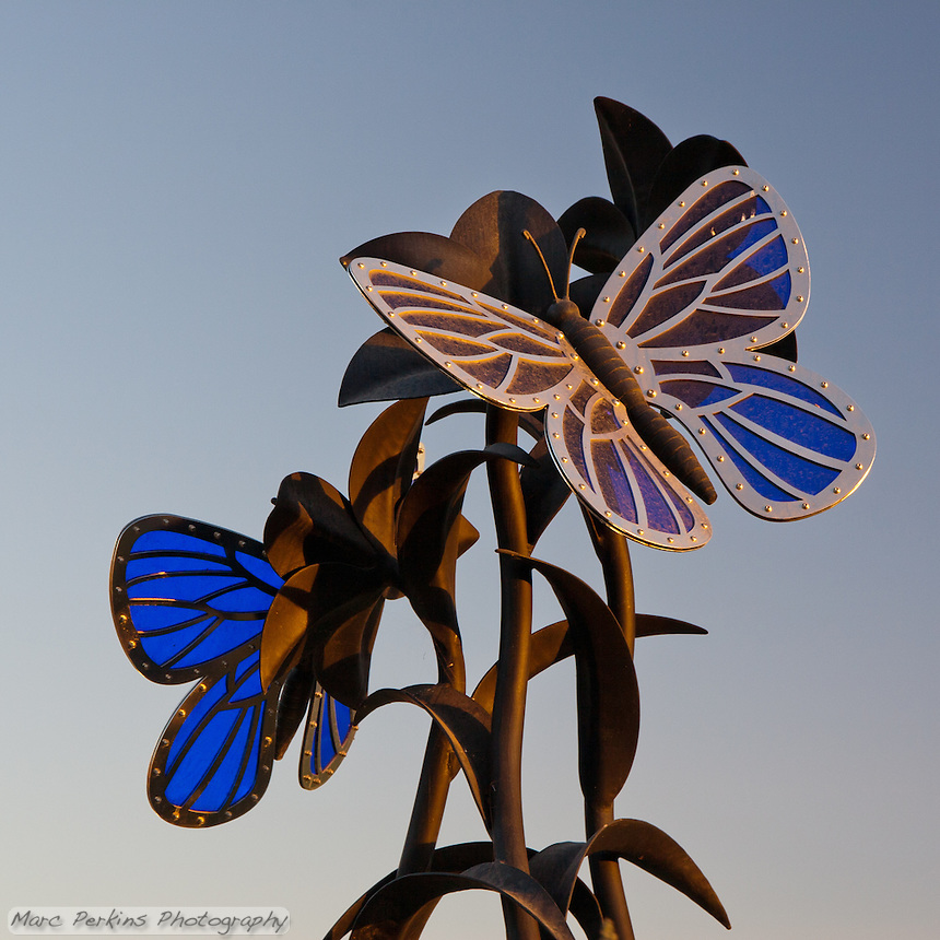 The butterfly statue at Stanton Central Park, seen in a closeup view taken at sunset on a clear sunny day. The statue is made of blue glass, stainless steel, and black iron.