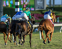 HALLANDALE BEACH, FL - MAR 3:Sadler's Joy #1 trained Thomas Albertrani with Julien Leparoux in the irons takes the lead down the home stretch on the way to winning the $200,000 Mac Diarmida Stakes (G2) at Gulfstream Park on March 3, 2018 in Hallandale Beach, Florida. (Photo by Bob Aaron/Eclipse Sportswire/Getty Images)