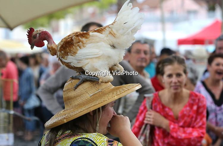 Foto: VidiPhoto<br /> <br /> LOUHANS &ndash; Uit heel Frankrijk komen kopers en toeristen maandag naar de Boerenmarkt in Louhans (Bourgogne) voor de enige echte Bresse (of Bressekip). Het ras wordt onder Nederlandse biologische fokkers ook steeds populairder vanwege de hoge opbrengst en de exclusieve vleeskwaliteit. De kip mag echter alleen Bresse heten als het ook uit de Bresse-regio in Frankrijk komt. Doordat de kippen over bijzonder fijn en zacht vlees beschikken, en heel rijk van smaak zijn, is het enorm populair in de bekendste restaurants van Frankrijk. De fokkerij van de poulet de bresse wordt goed bewaakt. Zo mogen de kippen alleen in kleine bedrijven met een limiet aantal van 500 stuks per bedrijf worden gehouden. Iedere Bress moet 10 vierkante meter grasland tot zijn beschikking hebben. Ieder bedrijf slacht zijn eigen kippen. Als bijvoer krijgen ze hoofdzakelijk granen, maar ook gekookte tarwe en gerst en ma&iuml;smeel met verse melk van de koe.