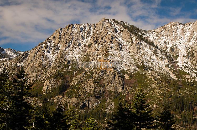 Lake Tahoe mountainside in California.