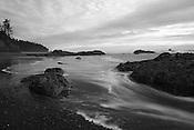 Coastal Black & White
