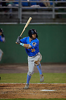 Myrtle Beach Pelicans Zac Taylor (32) at bat during a Carolina League game against the Potomac Nationals on August 14, 2019 at Northwest Federal Field at Pfitzner Stadium in Woodbridge, Virginia.  Potomac defeated Myrtle Beach 7-0.  (Mike Janes/Four Seam Images)