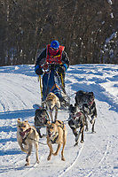2007 Limited North American Championship Sled dog race in Fairbanks, Alaska.