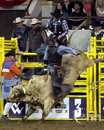 1/24/09--Photo by Rick Davis--PRCA cowboy Luke Haught of Weatherford, Texas was awarded a 62 point score and a re-ride option on the bull Lookout during action at the 103rd National Western Stock Show and Rodeo in Denver, Colorado.