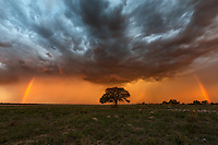 This is why I love the rainy season in Botswana so much; it offers the opportunity to see incredibly dramatic scenes such as these.<br />
