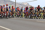 The peloton just after Km0 the start of Stage 4 of La Vuelta 2019 running 175.5km from Cullera to El Puig, Spain. 27th August 2019.<br /> Picture: Ann Clarke | Cyclefile<br /> <br /> All photos usage must carry mandatory copyright credit (© Cyclefile | Ann Clarke)