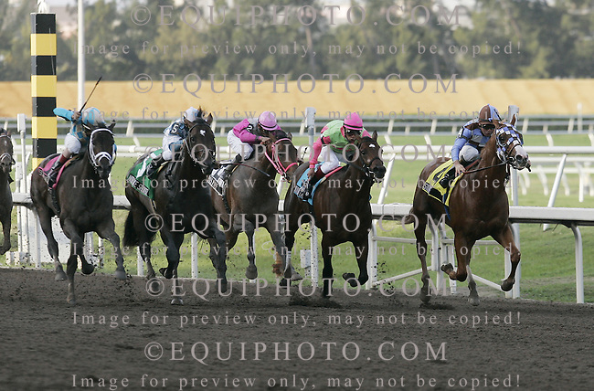 Scat Daddy (L) with John Velazquez riding storms past the field to win the $350,000 Fountain Of Youth Stakes at Gulfstream Park.  Stormello (R) with Kent Desormeaux was 2nd, and Nobiz Like Showbiz (2nd from L) with Cornelio Velasquez was third.  Photo By Gary I. Rothstein/EQUI-PHOTO