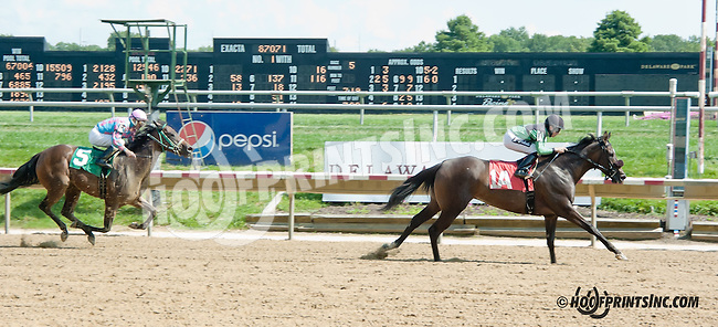 Black Notebook winning at Delaware Park on 8/21/13