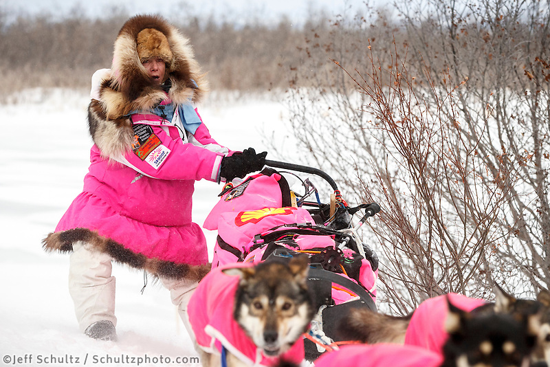 DeeDee Jonrow manuevers her sled up a side hill on the trail in the evening a few miles before the Unalakleet checkpoint on Monday March 16, 2015 during Iditarod 2015.  <br /> <br /> (C) Jeff Schultz/SchultzPhoto.com - ALL RIGHTS RESERVED<br />  DUPLICATION  PROHIBITED  WITHOUT  PERMISSION