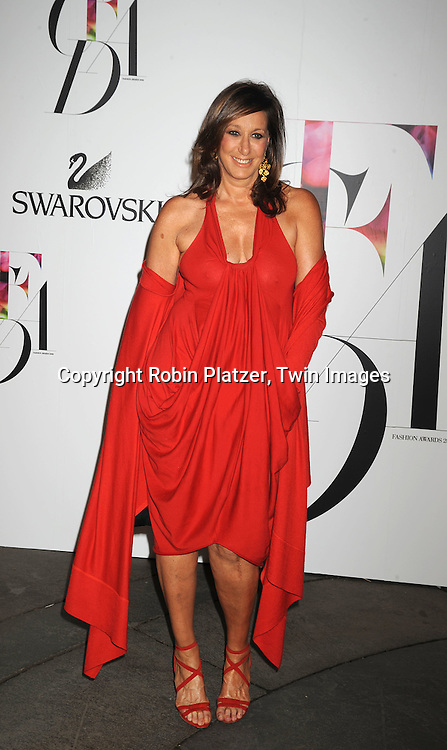 Donna Karan.posing for photographers at The 2008 CFDA Fashion Awards on June 2, 2008 at The New York Public Library in .New York City. ..Robin Platzer, Twin Images