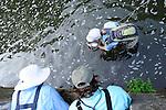 Fly fishing image, fly fishing school