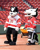 Rhett and Paws - A press conference hosted by the Hockey East Association, the Boston Red Sox and Fenway Sports Group was held on Thursday, August 20, 2009, at Fenway Park in Boston, MA, to announce that there would be a Hockey East college hockey doubleheader on Friday, January 8, 2010, held on the ice that will be used for the January 1, 2010 NHL Winter Classic.  The afternoon (4:00 pm EST) match will be between the Northeastern University Huskies (home team) and University of New Hampshire Wildcats women's teams while the evening (7:30 pm EST) match will be between the Boston College Eagles (home team) and the Boston University Terriers men's teams.