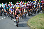 The peloton with led by Lotto-Soudal during Stage 11 of the 2019 Tour de France running 167km from Albi to Toulouse, France. 17th July 2019.<br /> Picture: ASO/Alex Broadway | Cyclefile<br /> All photos usage must carry mandatory copyright credit (© Cyclefile | ASO/Alex Broadway)