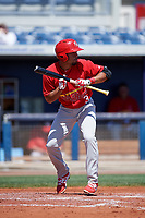 Palm Beach Cardinals shortstop Edmundo Sosa (3) squares around to bunt during a game against the Charlotte Stone Crabs on April 12, 2017 at Charlotte Sports Park in Port Charlotte, Florida.  Palm Beach defeated Charlotte 8-7 in ten innings.  (Mike Janes/Four Seam Images)