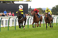 Winner of The Irish Yearling Sales Novice Stakes Kenzai Warrior ridden by Jason Watson and trained by Roger Teal during Racing at Salisbury Racecourse on 5th September 2019