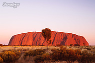 Image Ref: CA682<br />