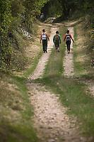 Europe/France/Midi-Pyrénées/46/Lot/Env Fontanes-du-Causse: Sur le circuit de la Forêt de la Braunhie au Font de Lavadoux  Auto N°: 2008-220  Auto N°: 2008-221  Auto N°: 2008-222