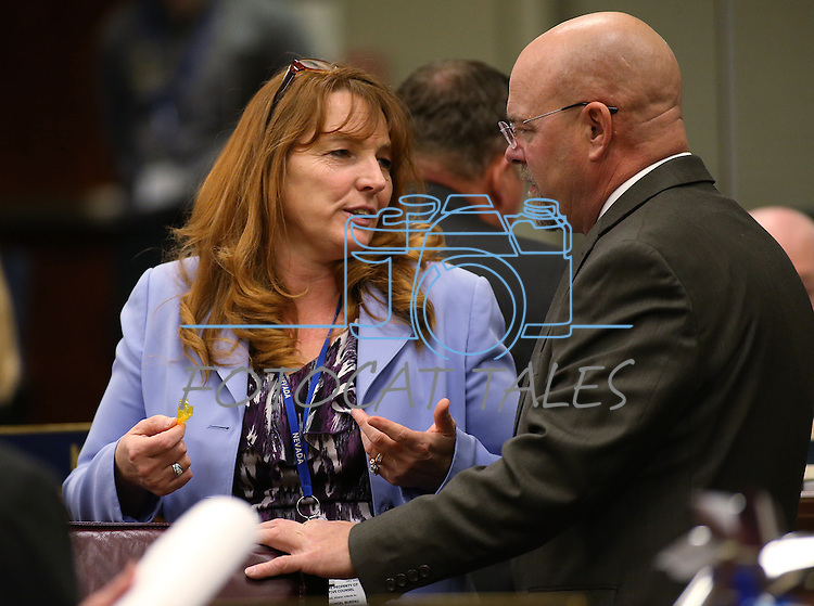 Nevada Assembly Minority Leader Marilyn Kirkpatrick, D-North Las Vegas, and Assemblyman Ira Hansen, R-Sparks, talk on the Assembly floor at the Legislative Building in Carson City, Nev., on Monday, April 6, 2015. <br />
