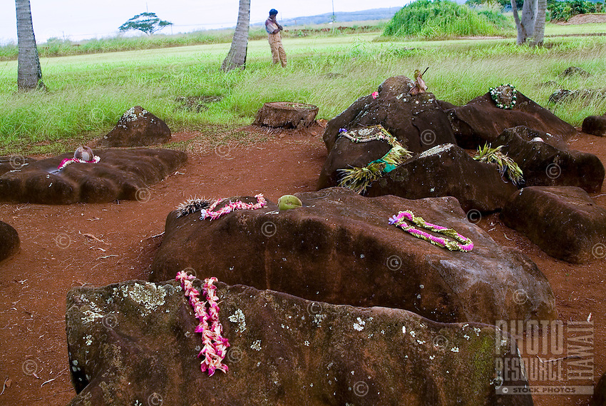 Historic Kukaniloko State Monument (Royal Birthing Stones) in Wahiawa, Oahu. Close-up of stones adorned with lei offerings.