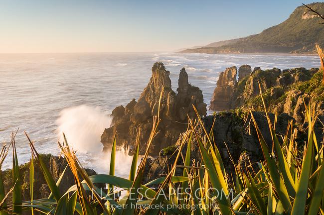 Sunset on rugged and wild coast in Punakaiki, Paparoa National Park, West Coast, Buller Region, New Zealand