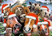 Howard, SELFIES, paintings+++++,GBHR873,#selfies#, EVERYDAY,horses ,puzzle,puzzles