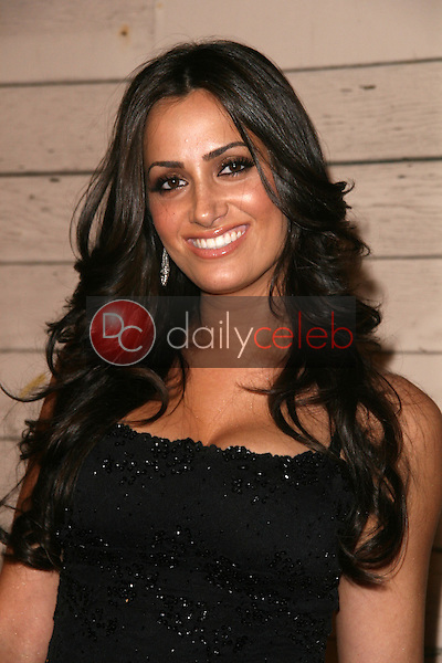 Donna Feldman<br />