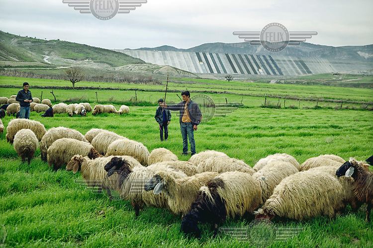 Kurdish shepherds with their sheep grazing on land that will disappear beneath 60 metres (200 feet) of water once the Ilusu hydroelectric dam being built in the background on the Tigris River is complete. The reservoir created by the dam will be approximately of 313 km2 (121 sq mi) and will flood several villages and the town of Hasankeyf.