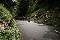 Team Mitchelton-Scott driving the peloton in service of their teammate & yellow jersey / GC leader Adam Yates (GBR/Mitchelton-Scott)<br /> <br /> Stage 7: Saint-Genix-les-Villages to Pipay  (133km)<br /> 71st Critérium du Dauphiné 2019 (2.UWT)<br /> <br /> ©kramon